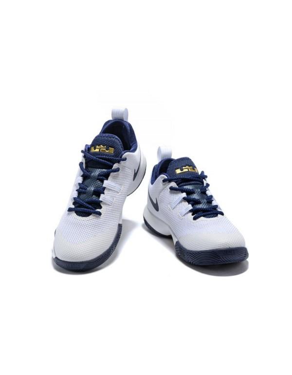 Nike LeBron Ambassador 10 White/Midnight Navy-Meta...